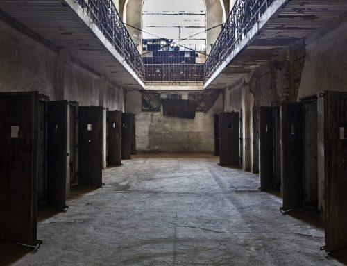 Raport privind situația Penitenciarului Râmnicu Sărat, aflat în administrarea IICCMER. Institutul demarează o cercetare administrativă pentru stabilirea prejudiciului total produs la nivelul IICCMER și va recurge la recuperarea acestuia în condițiile legii